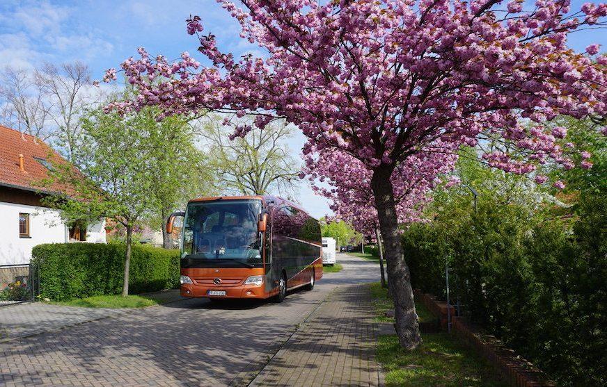 bus company in berlin Brandenburg